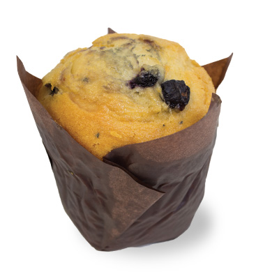 Blueberry Muffin  Individual  Delights Muffins