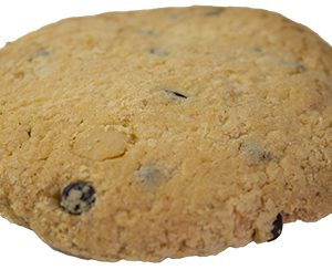 Macadamia Choc Chip Cookie  Individual  Delights Cookies